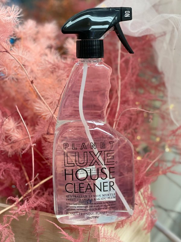 house-cleaner