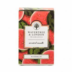 Soap Watermelon