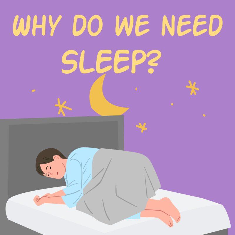 Why do we need sleep? Thumbnail